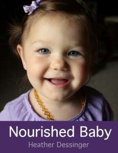 Nourished-Baby-eBook-Covers2-003-231x300