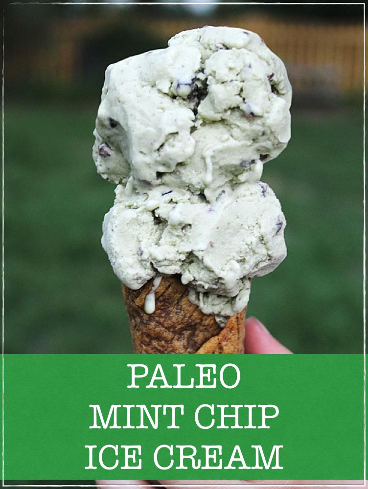 Paleo Mint Chip ice cream