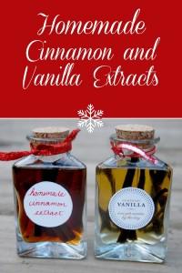 vanilla-and-cinnamon-extracts-pinterest