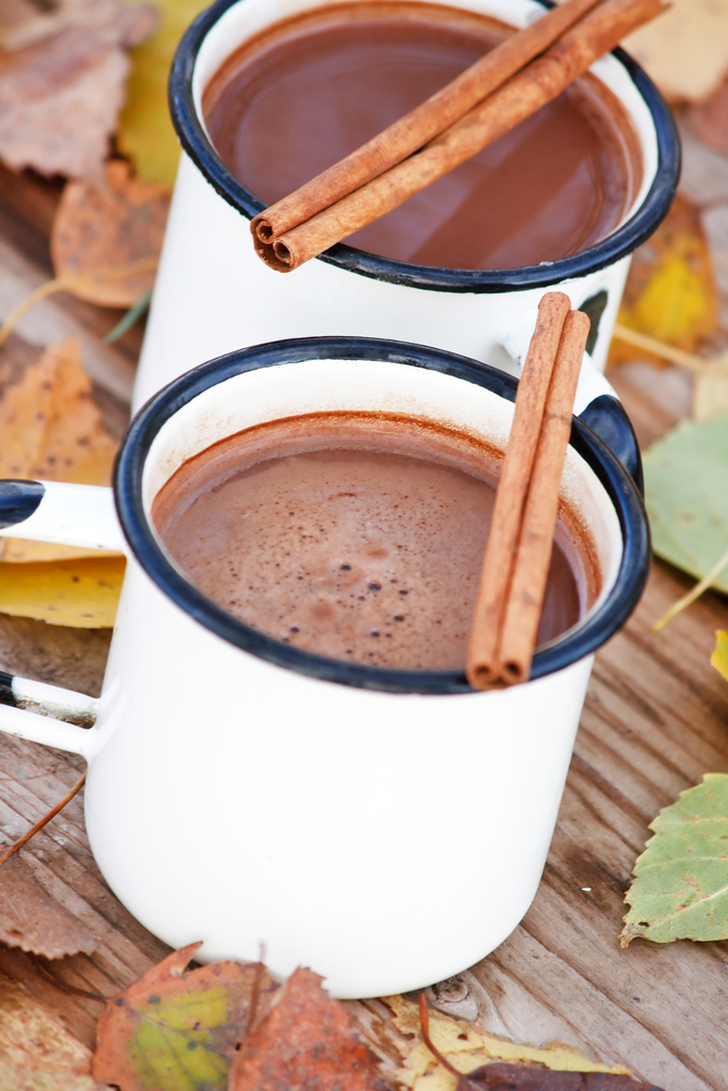 Pumpkin Spice Cocoa from Nummy For My Tummy